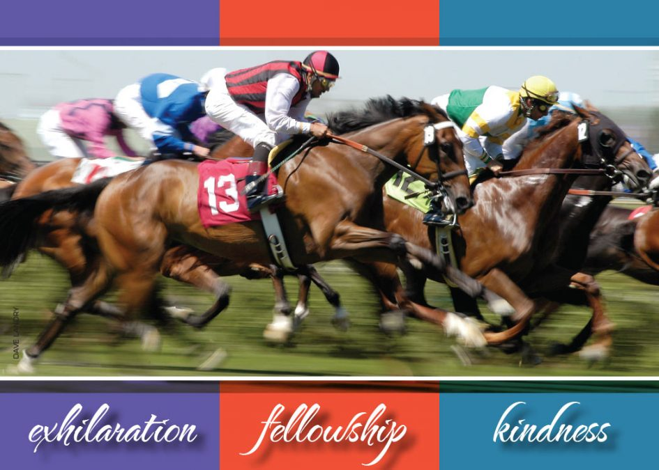 thoroughbred race club - exhilaration, fellowship, kindness branded header